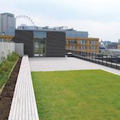Roof Terrace - Coin Street Conference Centre