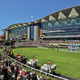 Racecourses Picture